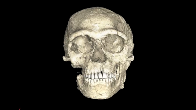 earliest-ever-modern-humans-discovered-showing-homo-sapiens-are-100000-years-older-than-we-thought