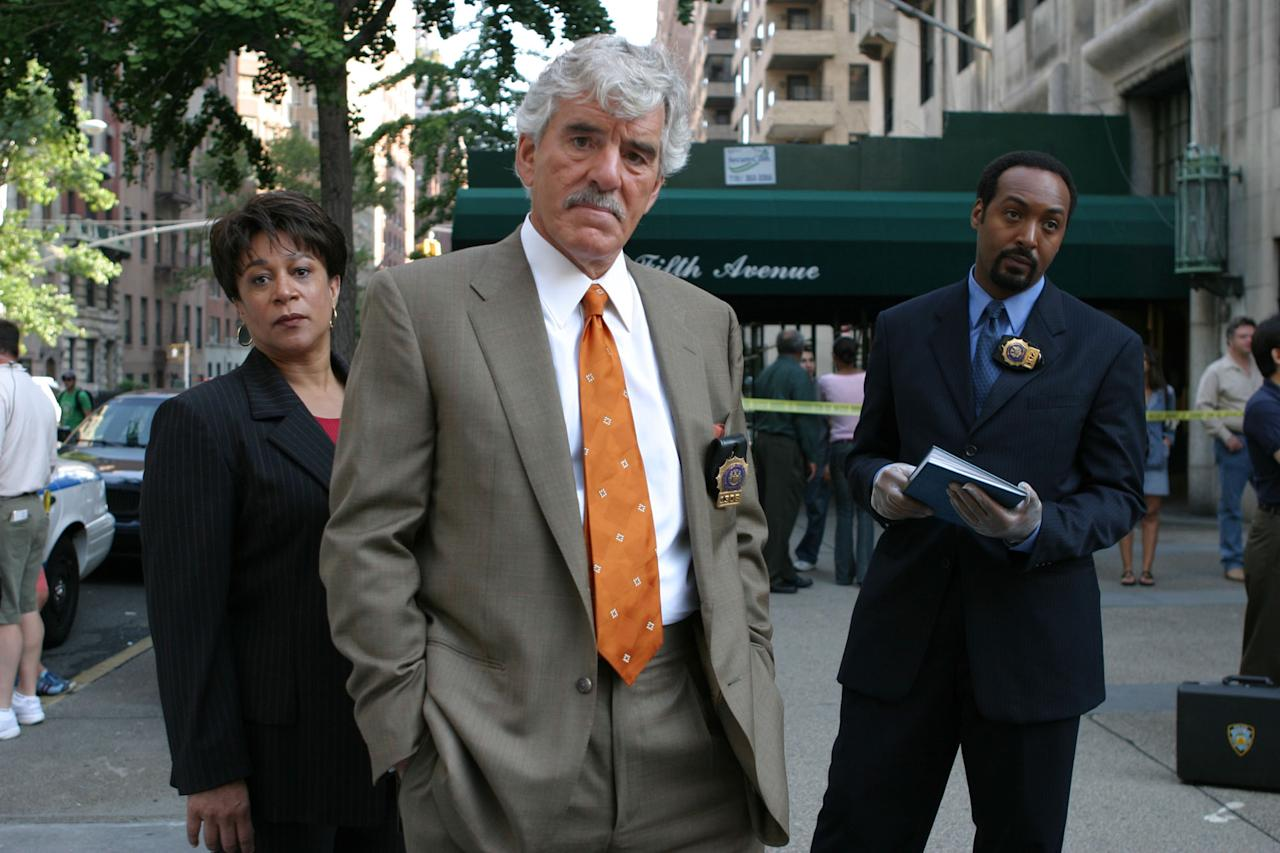 "S. Epatha Merkerson as Lieutenant Anita Van Buren, Dennis Farina as Detective Joe Fontana, and Jesse L. Martin as Detective Ed Green in the ""Law & Order"" episode, ""Coming Down Hard."""