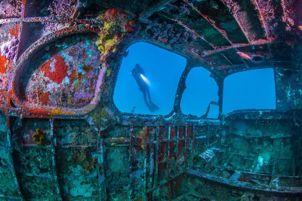 <p>Coral and corrosion work in tandem to create a beautiful rainbow coating on this rusted underwater wreckage.</p>