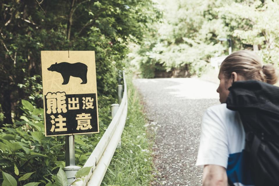 Wild bear attacks have increased in rural Japan, which is why innovative initiatives are seeing the light of day.