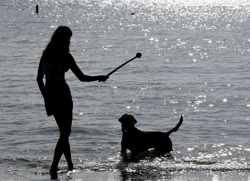 "In this Tuesday, Dec. 18, 2012 photo, Sarah Ranes, of Safety Harbor, prepares to throw a tennis ball to her dog ""Strider"" on a dog friendly beach at Fort DeSoto Park in St. Petersburg, Fla. With miles of sandy beaches, endless winter sunshine and a laid-back vibe, there's no reason to leave your four-legged friend behind when you vacation in Florida. From lodging that offers special pet beds, to beaches with off-leash play, to theme parks with nearby kennels, many places around the state accommodate visitors with pets. (AP Photo/Chris O'Meara)"