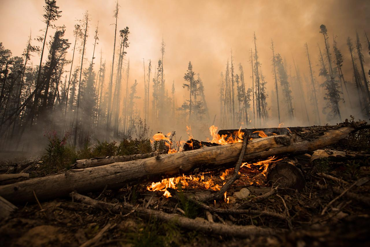 <p>B.C.'s wildfires have turned skies across the province a dark orange tinge, bringing home the reality that there are over 500 wildfires burning in the province to millions of Canadians. (Photo from The Canadian Press) </p>