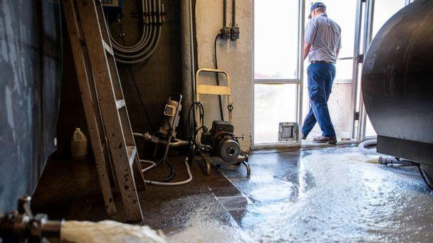 PHOTO: Ricky Jones, operations manager at Magic Valley Quality Milk Transport, walks out the door as 4,100 gallons of milk pour down the drain Wednesday, April 8, 2020, at the Azevedo Family Dairy in Buhl, Idaho. (Pat Sutphin/Times-News via AP)