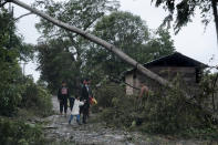 A fallen tree lies on the road after the passage of Hurricane Iota in Siuna, Nicaragua, Tuesday, Nov. 17, 2020. Hurricane Iota tore across Nicaragua on Tuesday, hours after roaring ashore as a Category 4 storm along almost exactly the same stretch of the Caribbean coast that was recently devastated by an equally powerful hurricane. (AP Photo/Carlos Herrera)