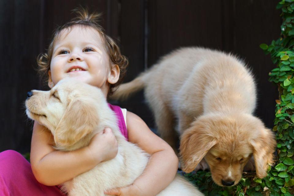 Never leave your dogs unattended with children. Photo: Getty