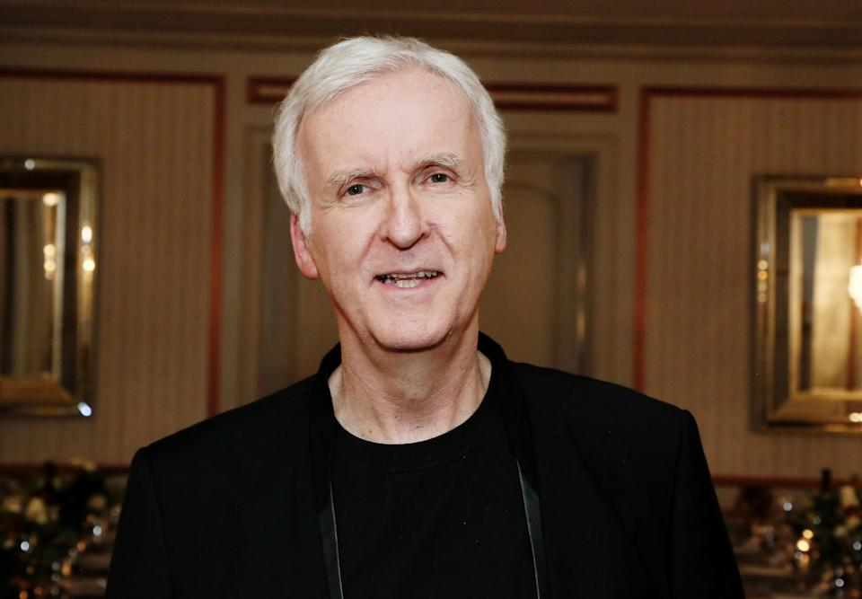 LOS ANGELES, CALIFORNIA - FEBRUARY 06: Director James Cameron attends Red Carpet Green Dress at the Private Residence of Jonas Tahlin, CEO of Absolut Elyx on February 06, 2020 in Los Angeles, California. (Photo by Gabriel Olsen/Getty Images for Absolut Elyx)