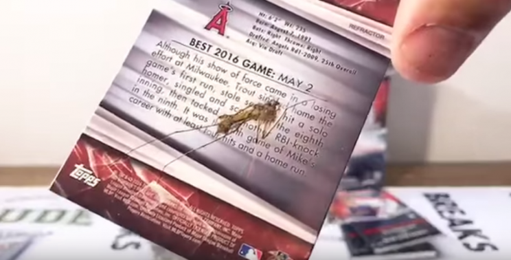 John Ehler opened a card pack to find a Mike Trout card with a surprise in it: an actual squished bug. (Youtube)