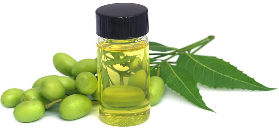 Neem oil softens, moisturises and protects the skin and can also be used as a deodorant.