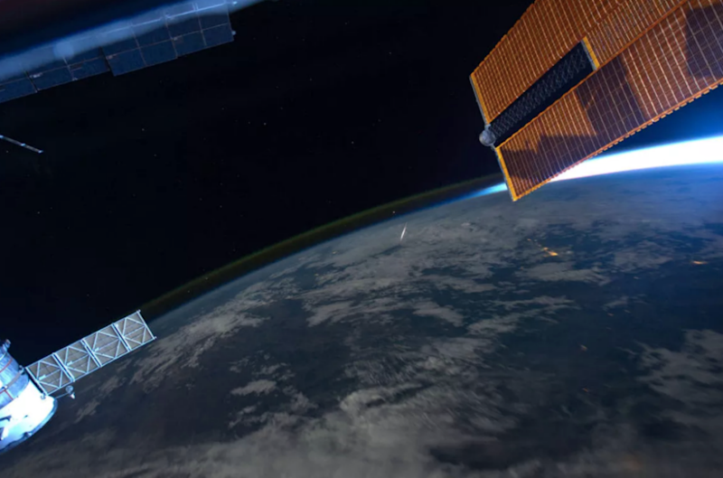 The worms spent five weeks on the ISS. Photo: NASA