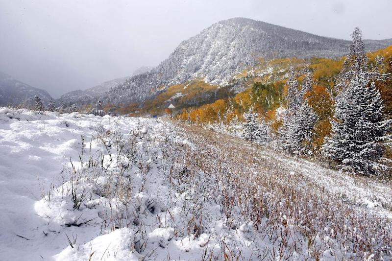 Fresh snow covers a roadside where Aspen trees turn yellow each Autumn, near Frisco, Colo., Friday Oct. 4, 2013. Powerful storms moved into the Midwest on Friday due to a cold weather system gaining strength as it traveled east from Colorado and Wyoming. (AP Photo/Brennan Linsley)