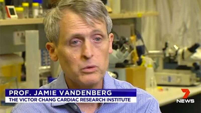 """""""I would prefer that you only got them from a pharmacist,"""" Professor Jamie Vandenberg told 7 News."""