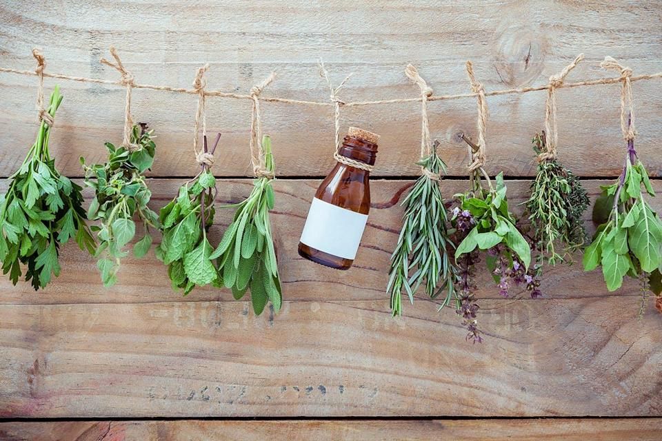 Herbs tied on string