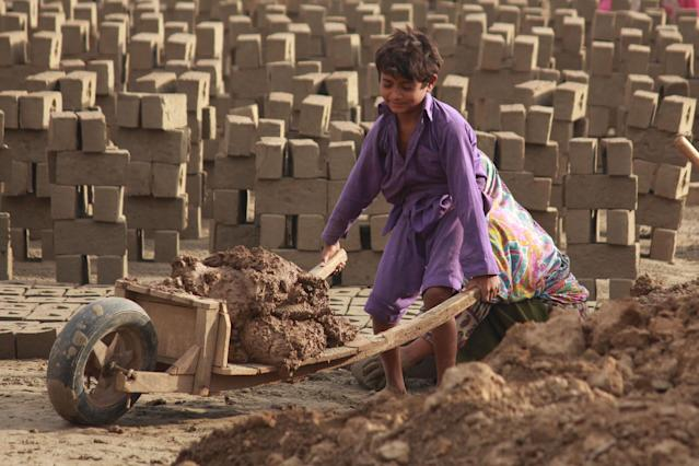 Nearly 13% of Pakistani children accounting for 2,449,480 individuals between the ages of 10 to 14 are child labourers. 76% of these children work in the agricultural sector involving activities like working in crop fields, fishing and shrimp harvesting and processing. A large number of children are also engaged in restaurants, tea stalls, transportation, and garbage scavenging. As per ILO, poverty is the single major factor responsible for the high prevalence of child labor in the country.