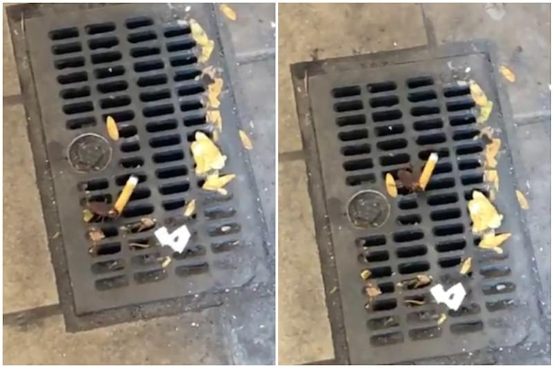 Watch: 'Cigarette Cockroach' Smoking  on the Streets of NYC is a Mood