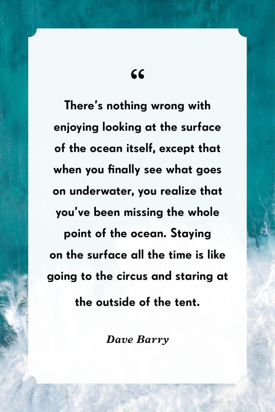 """<p>""""There's nothing wrong with enjoying looking at the surface of the ocean itself, except that when you finally see what goes on underwater, you realize that you've been missing the whole point of the ocean. Staying on the surface all the time is like going to the circus and staring at the outside of the tent.""""</p>"""