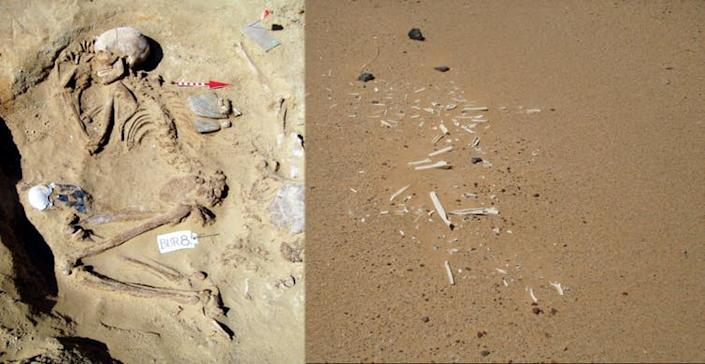 """<span class=""""caption"""">Well preserved vs. wind‐eroded remains at Gebel Ramlah.</span> <span class=""""attribution""""><span class=""""license"""">Author provided</span></span>"""