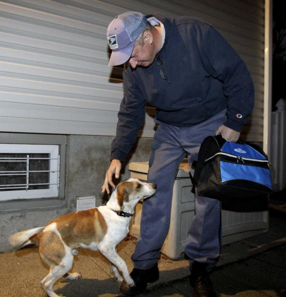 "In this Oct. 28, 2011, file photo, Daniel, left, who is better known as the ""Miracle Dog"", plays with Mark Pavlik in Rochelle Park, N.J., where he was being fostered upon his arrival in the state. The stray beagle mix, who walked out unscathed from the carbon monoxide administered by the Animal Control Department in Florence, Ala., will be among eight shelter dogs riding on a float in the Rose Parade in Pasadena, Calif., on New Year's Day. (AP Photo/Julio Cortez, File)"