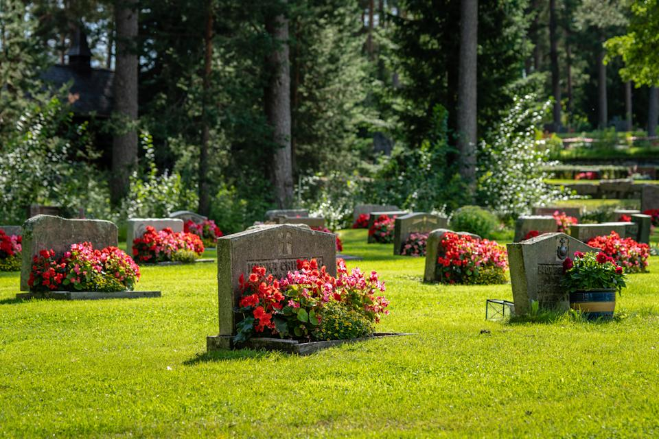 Bright summer sunshine on rows of gravestones with red and pink flowers on a beautiful and well cared cemetery