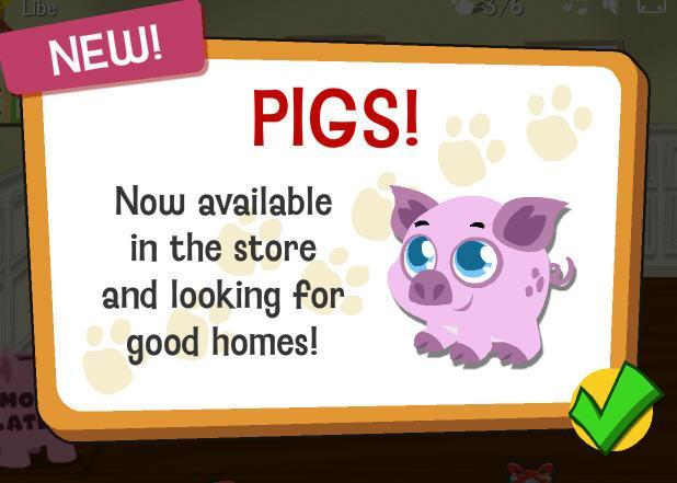 Happy pets pigs fly into stores!