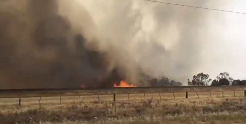 A grassfire burning out of control in Strathallan on Thursday afternoon. Source: Nine News