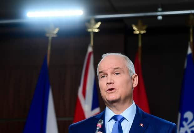 Conservative Leader Erin O'Toole says he will vote against a bill introduced by a member of his party that would make performing a sex-selective abortion a criminal offence. (Adrian Wyld/The Canadian Press - image credit)