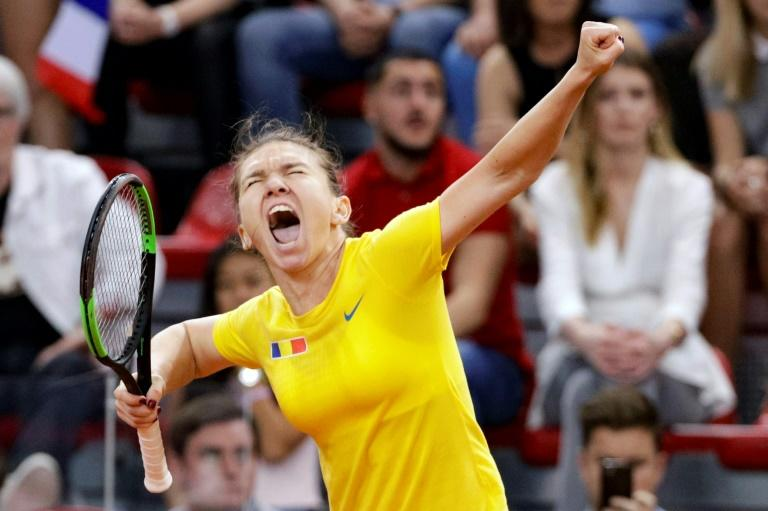 Scream and shout: Simona Halep celebrates after winning against Caroline Garcia on Sunday
