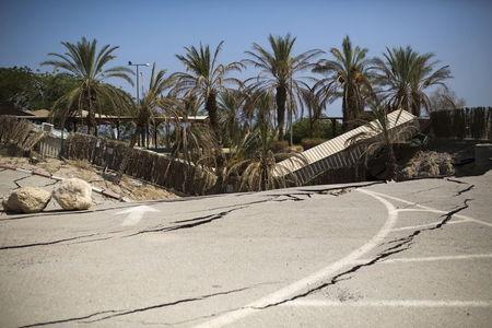 Palm trees that collapsed into a sinkhole are seen at an abandoned tourist resort on the shore of the Dead Sea, Israel July 28, 2015. On at least one occasion, hikers were injured falling into one of the pits. REUTERS/Amir Cohen