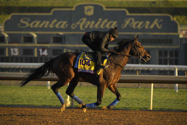 While horse racing has come under fire in recent years due to its increasing death rate, those inside the sport showed their support at the Breeders' Cup. (AP/Mark J. Terrill)