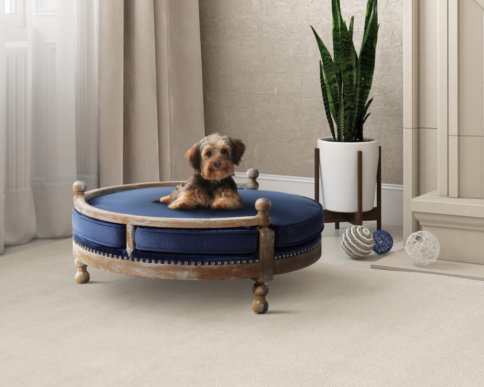 This photo provided by Pottery Barn shows the company's Antique Wood Pet Bed. No longer are furniture companies content to offer you staples like a sofa, easy chair and bed. Now they have those items for your pet, too, designed not to clash with the rest of your decor. Pottery Barn, Crate and Barrel, Ikea, Casper mattresses and other popular furniture purveyors have lines for pets, often in styles that complement their human-size living room furniture. (Pottery Barn via AP)