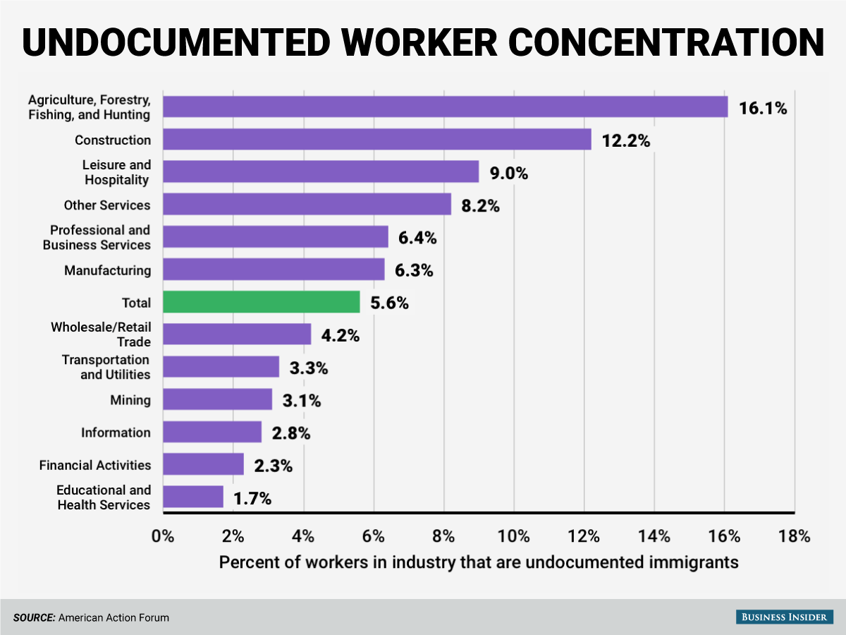 undocumented worker industry concentration