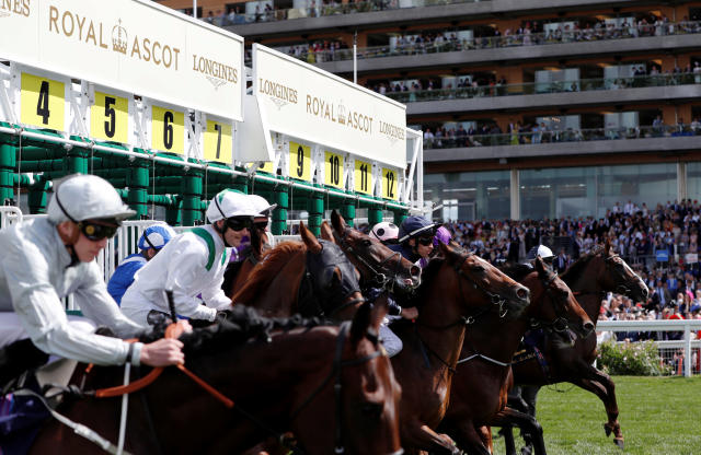 Horse Racing - Royal Ascot - Ascot Racecourse, Ascot, Britain - June 20, 2018 General view at the start of the 3.05 Queen's Vase Action Images via Reuters/Paul Childs