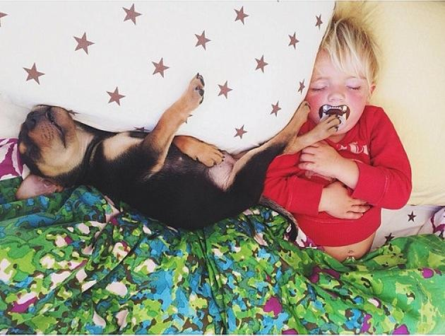 """<div class=""""caption-credit""""> Photo by: Jessica Shyba</div>Theo and Beau have their afternoon nap. <br> Source: <a href=""""http://www.mommasgonecity.com/2013/11/wishes-granted-theo-and-beau/"""" rel=""""nofollow noopener"""" target=""""_blank"""" data-ylk=""""slk:MommasGoneCity"""" class=""""link rapid-noclick-resp"""">MommasGoneCity</a> <br>"""