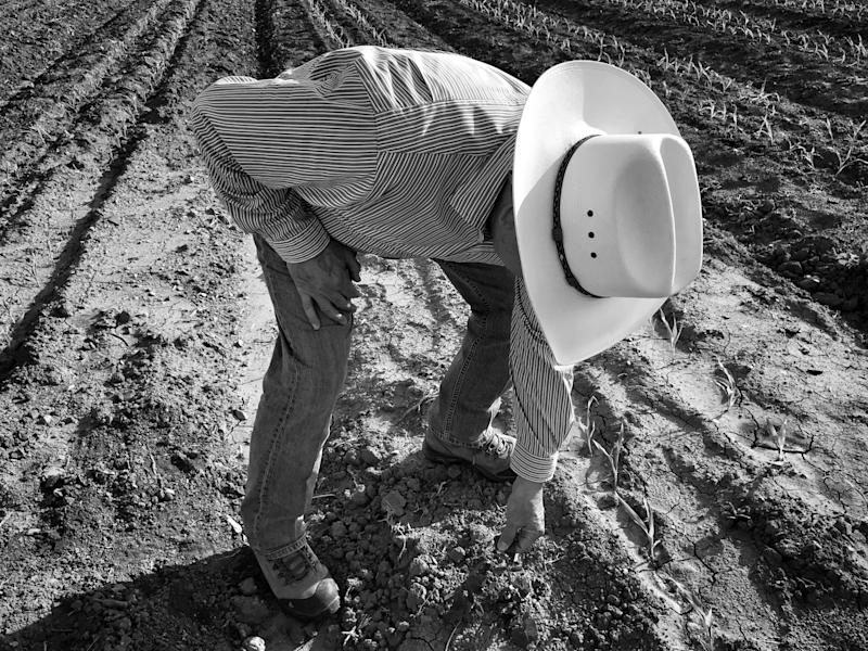 Joe Del Bosque stands on a field where he will plant melons this spring in Firebaugh, Calif. (Photo: Holly Bailey/Yahoo News)