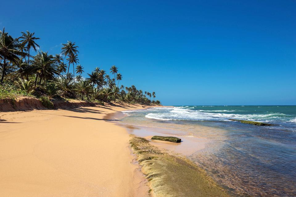 <p><strong>Set the scene for us. What's the draw to this beach?</strong><br> Playa La Pocita is close to Piñones, the long line of kiosks serving traditional Puerto Rican cuisine like <em>alcapurrias</em> and <em>pastelillos</em>, making it an easy choice after you've grabbed a bite.</p> <p><strong>How easy is it to get to?</strong><br> A cheap Uber will also do the trick. The beach is free to access and open to all, so you'll see families and packs of friends.</p> <p><strong>Are there decent services and facilities?</strong><br> There are no services here—it's BYO everything.</p> <p><strong>What is the area best for?</strong><br> Come because you want to drink Medalla beer and chow down on deep-fried food before taking a dip in the ocean.</p> <p><strong>When taking a dip, should we come equipped with water shoes, or is this a barefoot deal?</strong><br> You can go barefoot into the water. Just bring your own umbrella for shade—rentals aren't readily available.</p> <p><strong>Anything else we should know before planning a visit?</strong><br> Explore the kiosks along the road, pick up a coco frío to stay hydrated, and keep applying sunscreen.</p> <p><strong>So why would you recommend Playa La Pocita?</strong><br> The low price of food and drinks at Piñones, the free access to the beach, and the fact that an Uber from the city won't cost more than $10 makes this an extremely worthwhile way to spend a day—so long as you have all the beach gear you need.</p>