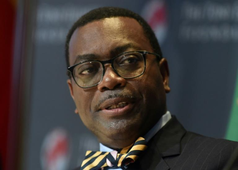 Under fire: Akinwumi Adesina, president of the African Development Bank (AFP Photo/PIUS UTOMI EKPEI)