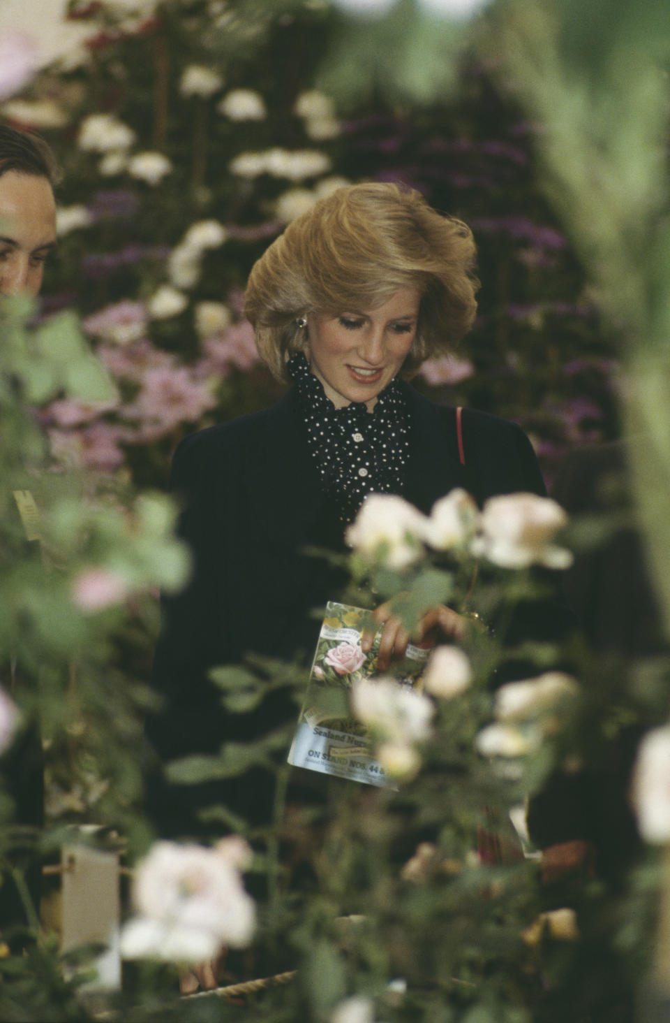 Diana, Princess of Wales  (1961 - 1997) at the Chelsea Flower Show in London, May 1984.   (Photo by Jayne Fincher/Princess Diana Archive/Getty Images)