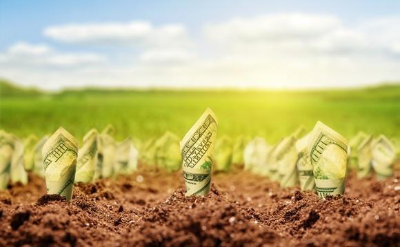 Dollars rolled and planted into soil with a green field in the background to denote money growth.