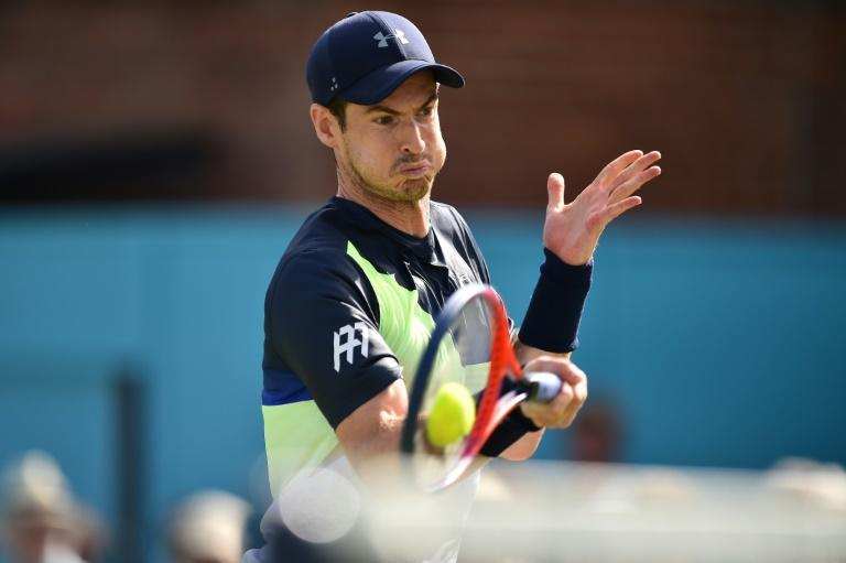 By the seaside: Andy Murray takes a wild card at Eastbourne