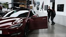 Tesla CEO Elon Musk Signals 'Dog Mode' Could Be on the Way