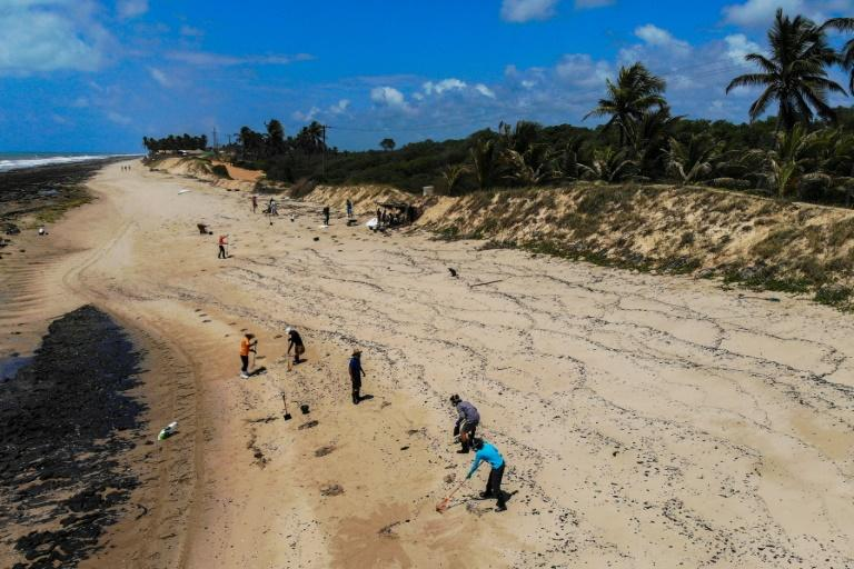 Volunteers are trying to clean up Brazilian beaches in time for the tourism season (AFP Photo/MATEUS MORBECK)