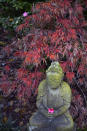 An antique Buddha statue with a floral offering is surrounded by a Japanese maple tree at Lotusland on Monday, Nov. 23, 2020, in Montecito, Calif. The Japanese-style strolling garden is a peaceful sanctuary, where visitors can meditate and commune with nature. (AP Photo/Pamela Hassell)