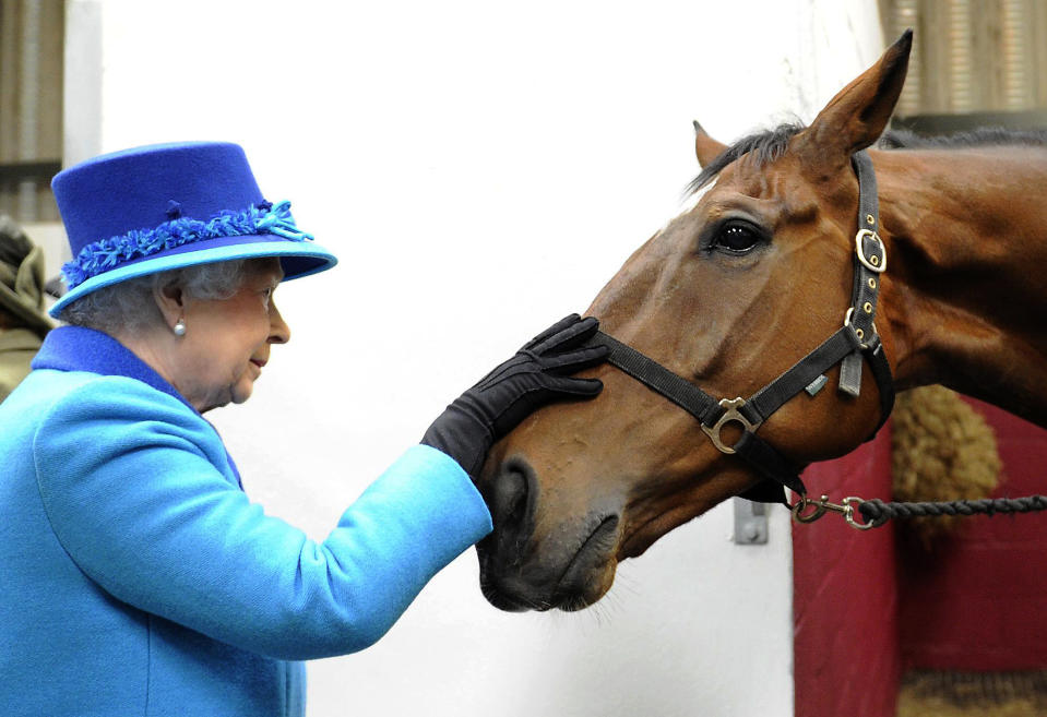 Britain's Queen Elizabeth pats former Grand National favourite Teaforthree, during her visit to Cotts Equine Hospital in Narberth, Wales April 29, 2014.  REUTERS/Rebecca Naden (BRITAIN - Tags: ANIMALS ENTERTAINMENT SPORT HORSE RACING ROYALS TPX IMAGES OF THE DAY)