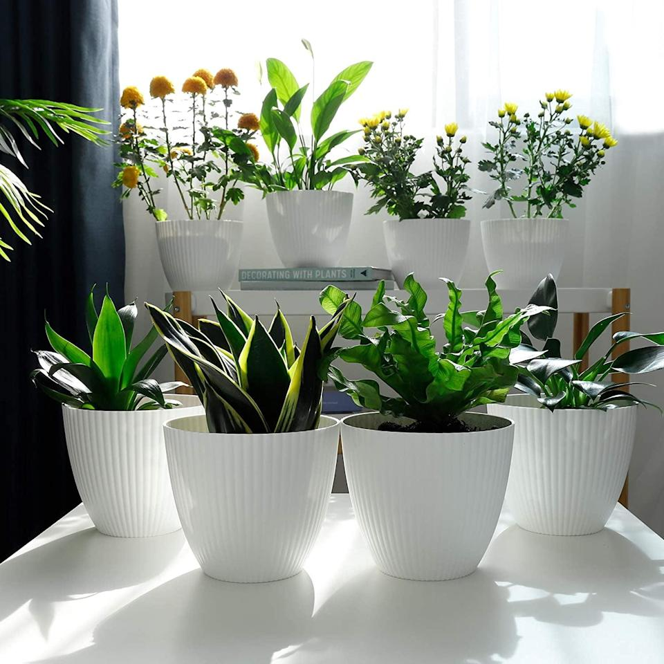 <p>Plant parents, now is the time to stock up on pots with the <span>Potey Indoor Nursery Pots Set of 8 with Drainage Holes - White</span> ($9, originally $13).</p>