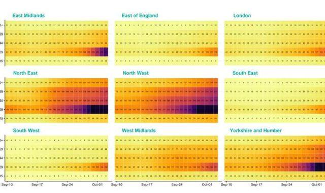 Coronavirus: Regional heat charts reveal where COVID-19 is 'creeping up' into older age groups