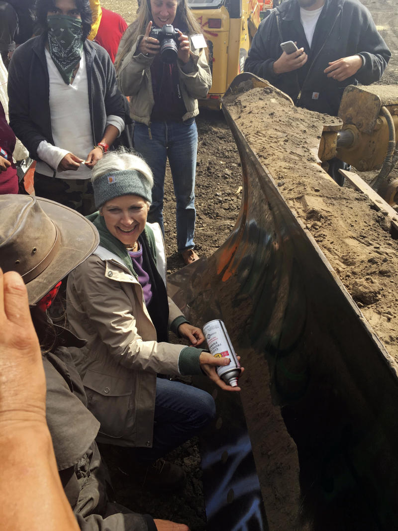 Judge approves Jill Stein's plea deal for pipeline protest