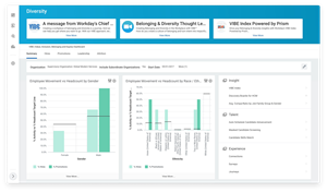 VIBE Central brings diversity- and inclusion-related data into one centralized place in Workday HCM.