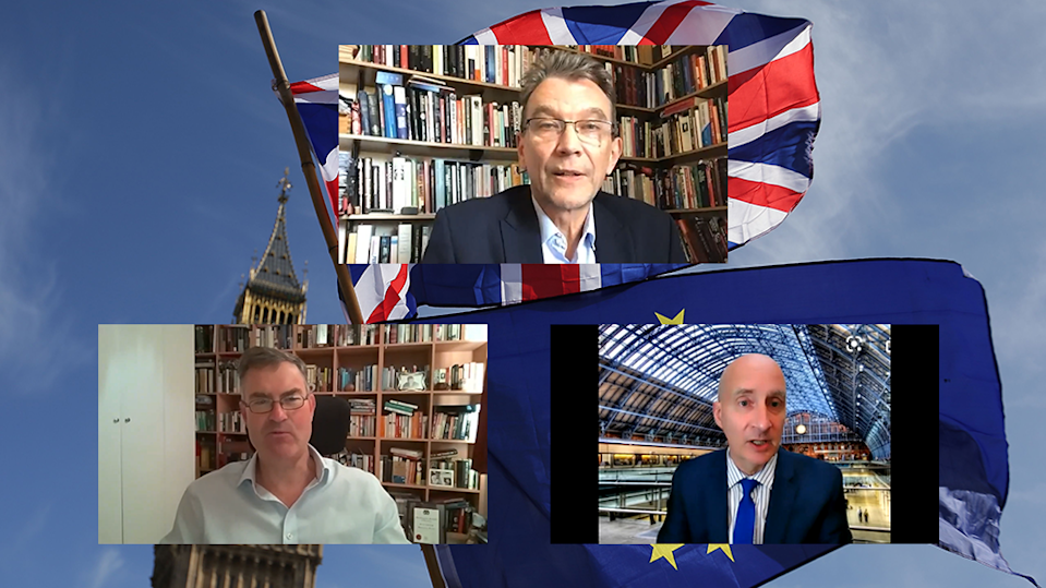 The Independent's EU referendum anniversary event held on Zoom  (The Independent )