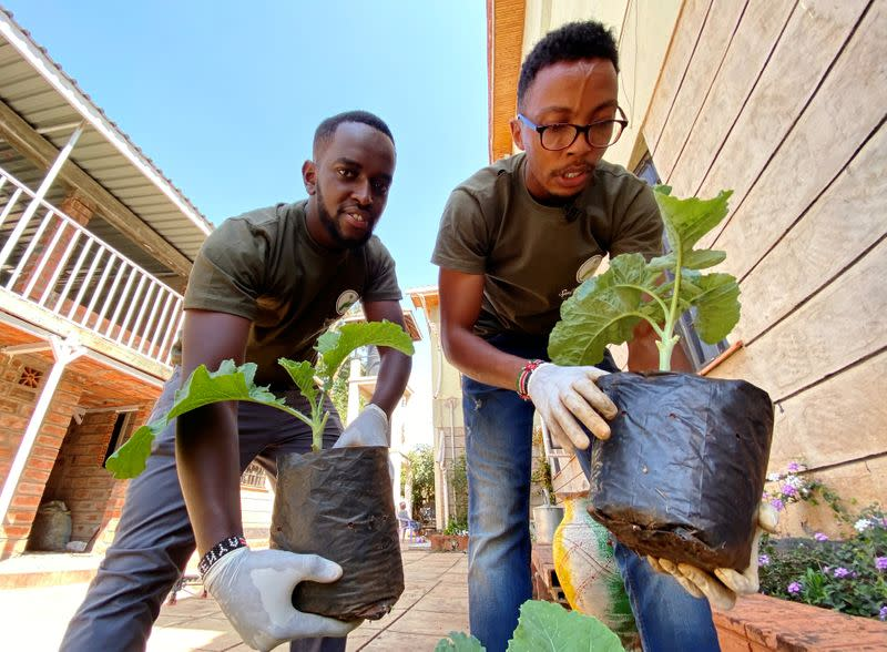 Kenyan recycling firm mixes kitchen waste to boost urban farming
