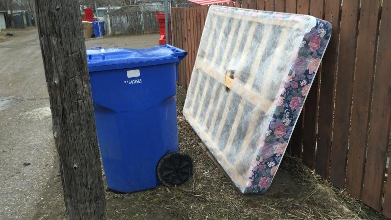 Young offenders work to clear up junk from Regina alleys