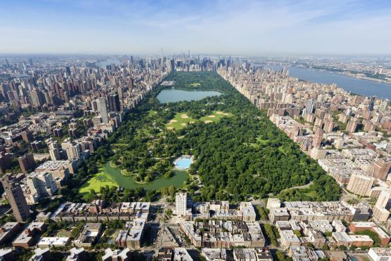 Central Park: the lungs of New York City (iStock)